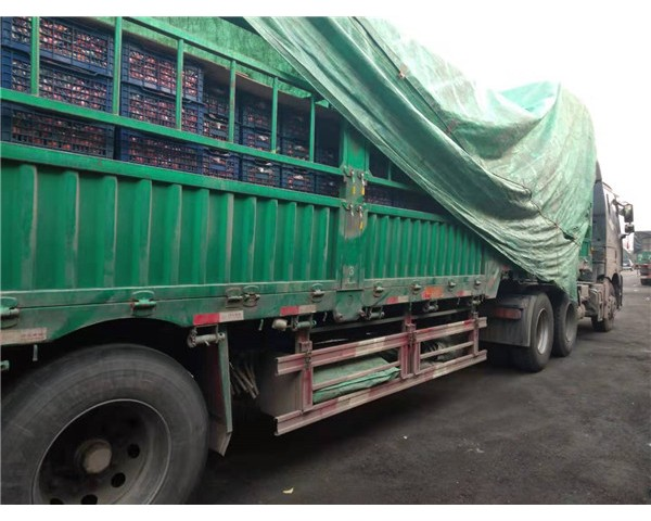 陆师傅或许折射70后卡车司机的困惑:未来的路在何方?